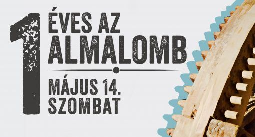 Almalomb is 1 year old
